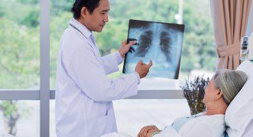 Apa itu Penyakit Bronkitis?